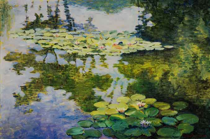 Water Lilies in...